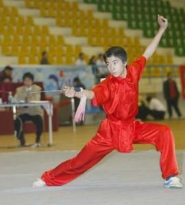 Ушу-таолу (Wushu Taolu)