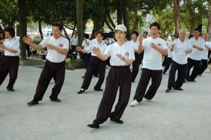 Тайцзицюань (Taijiquan)
