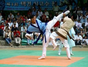 Тхэккён (Taekkyun)
