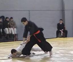 Дзю-дзюцу (Джиу-джитсу)