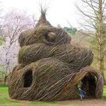 Топ-5 лучших «зеленых» домов в мире
