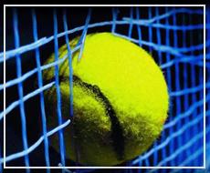 Выгодные ставки на теннис